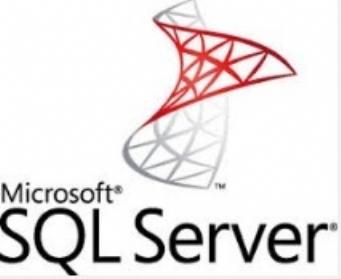 garanzia-del-funzionamento-di-microsoft-sql-server-in-gpnx_m